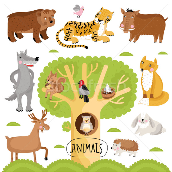 Animals vector set. Stock photo © studioworkstock