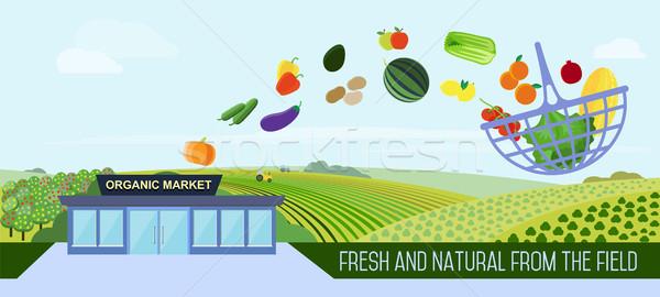 Organic food delivery. Stock photo © studioworkstock