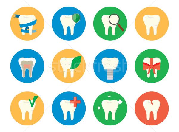 Set of tooth Stock photo © studioworkstock