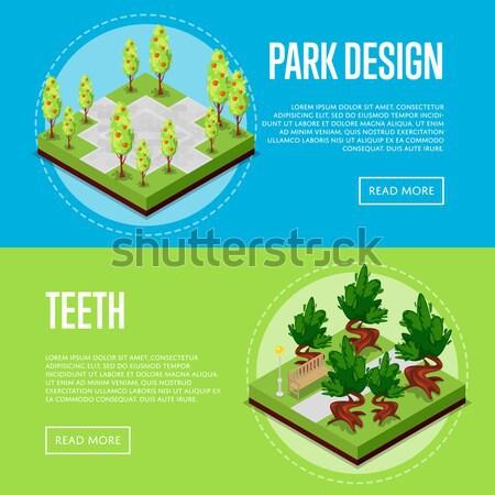 Home Garten dekorativ Pflanzen Plakate Stock foto © studioworkstock