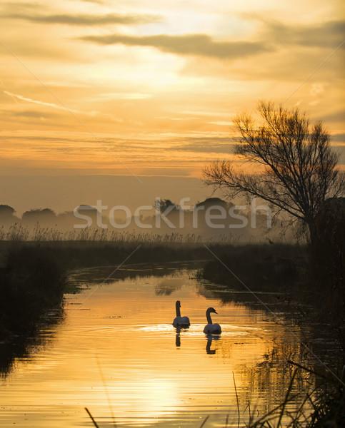 Hajnal pirkadat víz felhők madár Anglia Stock fotó © suerob