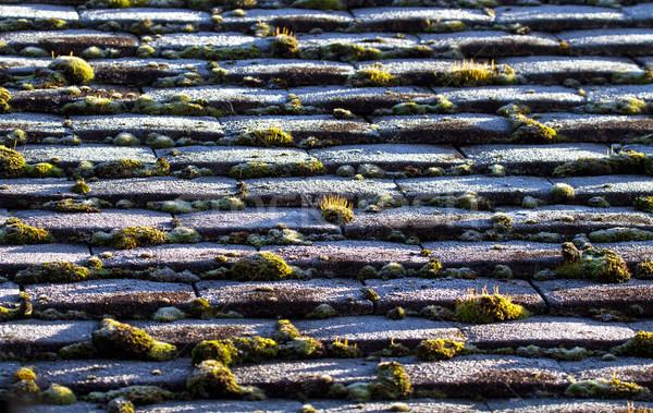 霜 屋根 タイル 苔 緑 影 ストックフォト © suerob