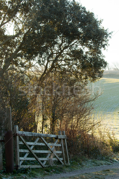 Countryside Gate and Track Stock photo © suerob