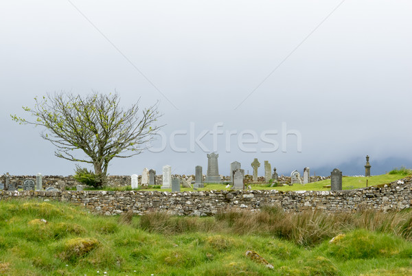 Skye Graveyard Stock photo © suerob