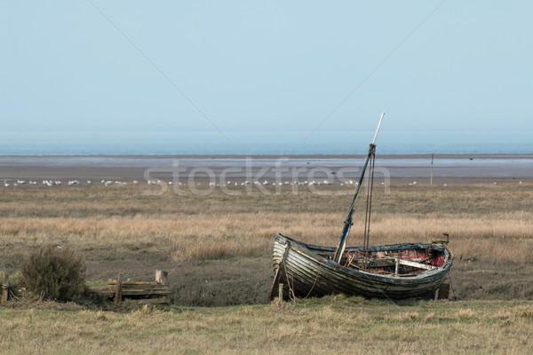 Eski düşük gelgit doğa deniz Stok fotoğraf © suerob