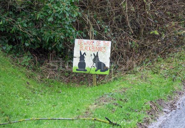 Siyah tavşan imzalamak çim yol sokak Stok fotoğraf © suerob
