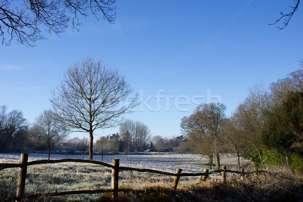 Pays scène hiver campagne gel soleil Photo stock © suerob