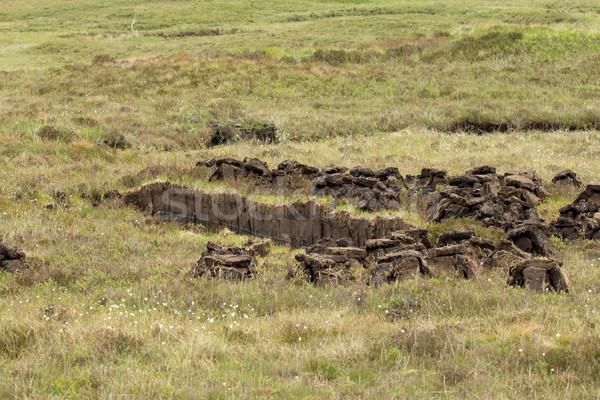 Peat Cutting Stock photo © suerob