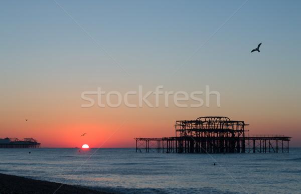 Sunrise plage ciel mer bleu oiseaux Photo stock © suerob