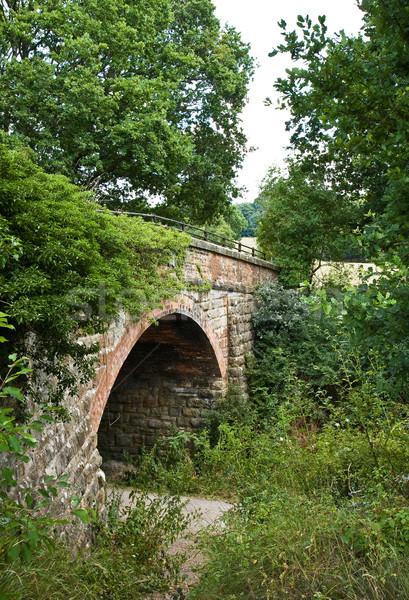 Pont forêt façon vieux route route Photo stock © suerob