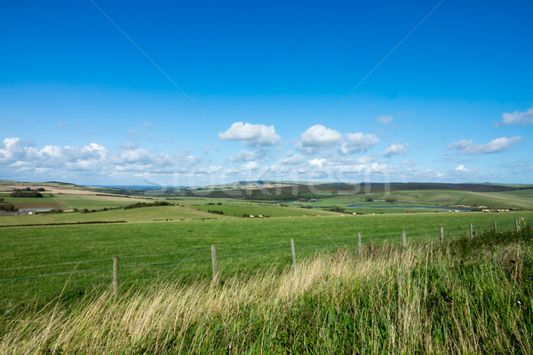 South Downs and Cuckmere Valley Stock photo © suerob