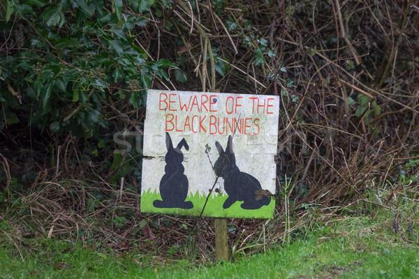 Noir lapin signe herbe route rue Photo stock © suerob