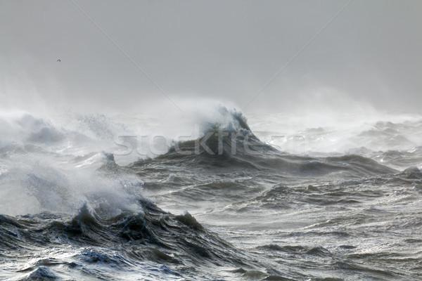 Wellen rau Hochwasser Sussex Sturm Wolken Stock foto © suerob