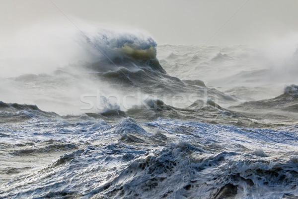 Wind and Wave Stock photo © suerob