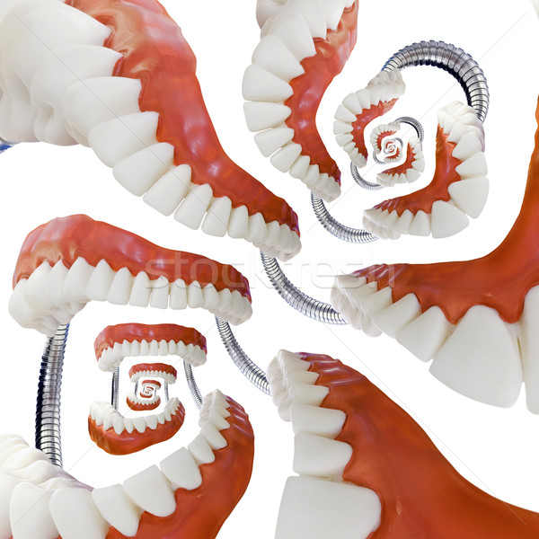 Denture Model Droste Stock photo © Suljo