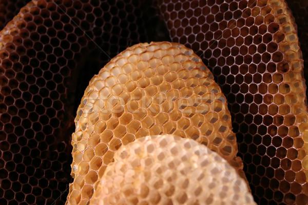 Arı kovan doğal organizasyon doğa arka Stok fotoğraf © Suljo