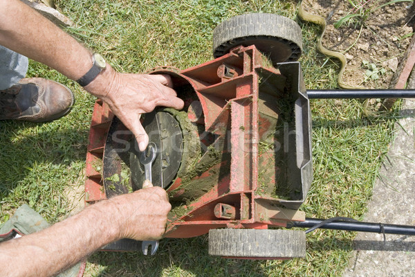 Lawnmower Stock photo © Suljo