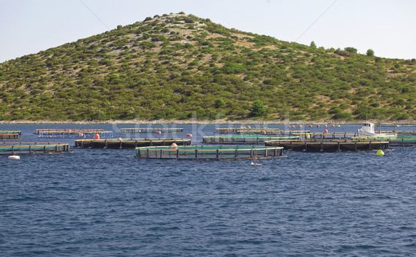 Fish Farming Cages Stock photo © Suljo