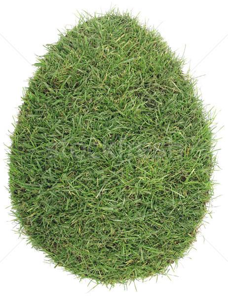 Tojás forma fű tőzeg kivágás alakú Stock fotó © Suljo