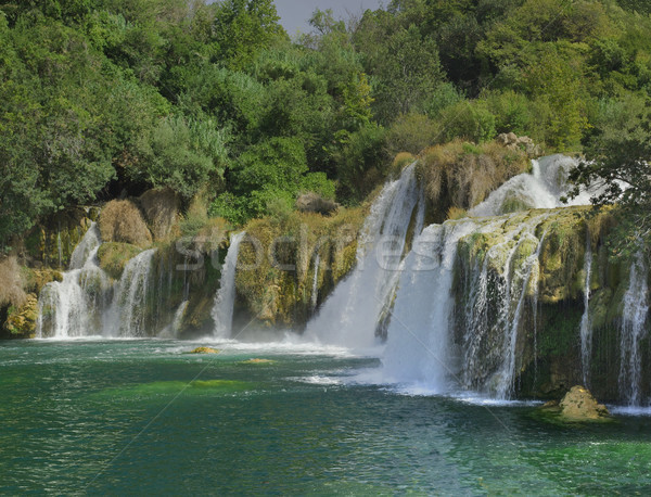 Fiume cascata parco acqua natura panorama Foto d'archivio © Suljo