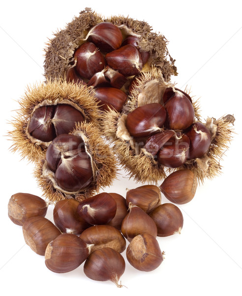 Chestnuts Stock photo © Suljo