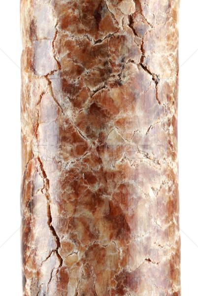 Wooden Pellet Magnification Cutout Stock photo © Suljo