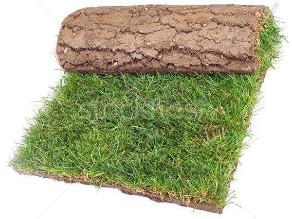 Roll of Grass Rug Stock photo © Suljo