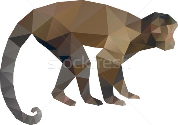 Stock fotó: Majom · alacsony · vektor · szimbólum · absztrakt · állat