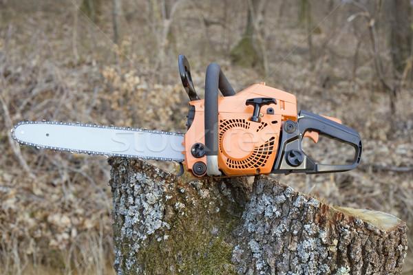 Keten zag oranje hout industriële machine Stockfoto © Suljo