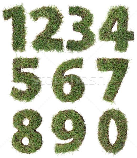 Grass Numbers Cutout Stock photo © Suljo