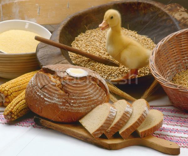 BreadAndDuck Stock photo © Suljo