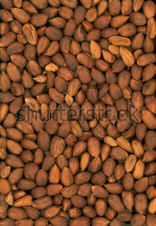 Nuts Stock photo © Suljo