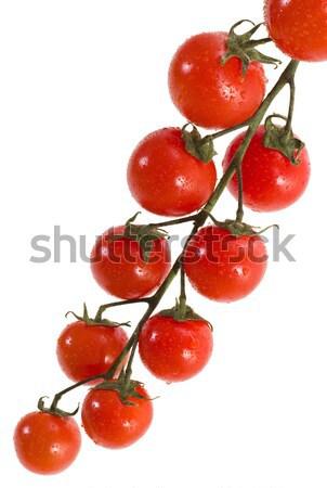 Cherry tomatoes Stock photo © Suljo
