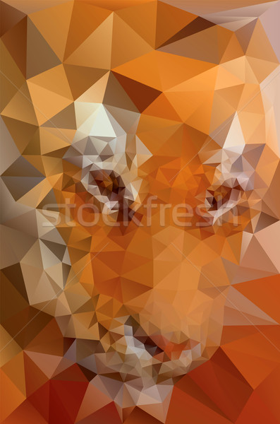 Triangular Tiger Face Stock photo © Suljo