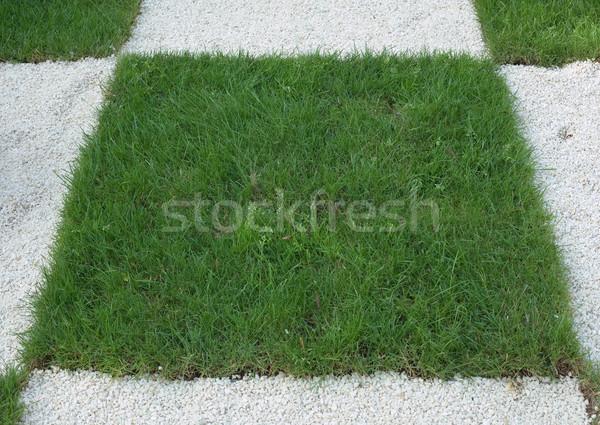 à carreaux herbe gazon blanche roches jardin Photo stock © Suljo