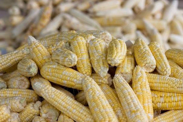 Mısır tatlı renk mısır taze tüketim Stok fotoğraf © sundaemorning
