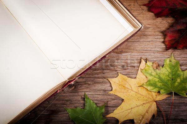 Eski kitap tablo sonbahar yaprakları eski ahşap masa kâğıt Stok fotoğraf © superelaks