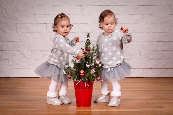Iki kızlar ayakta noel ağacı sevimli Stok fotoğraf © superelaks