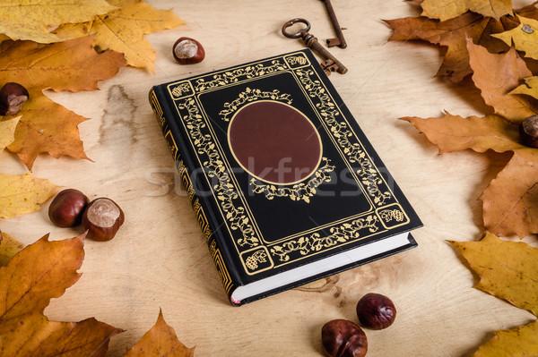 Kitap kuru yaprakları tablo eski kitap ahşap masa Stok fotoğraf © superelaks