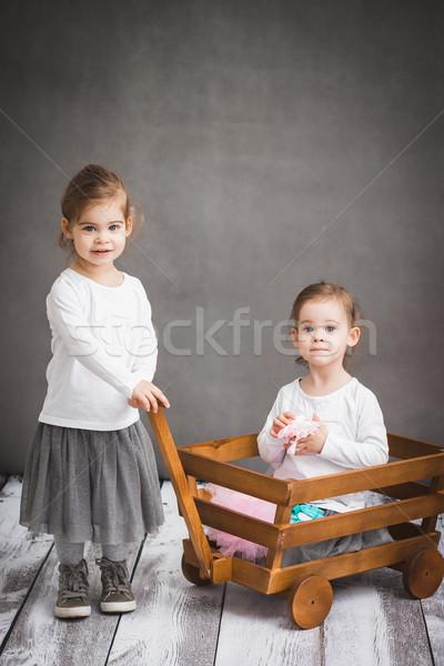 Iki kızlar oynama sevimli aile Stok fotoğraf © superelaks