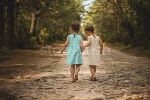 Iki güzel kızlar yürüyüş orman ayakta Stok fotoğraf © superelaks