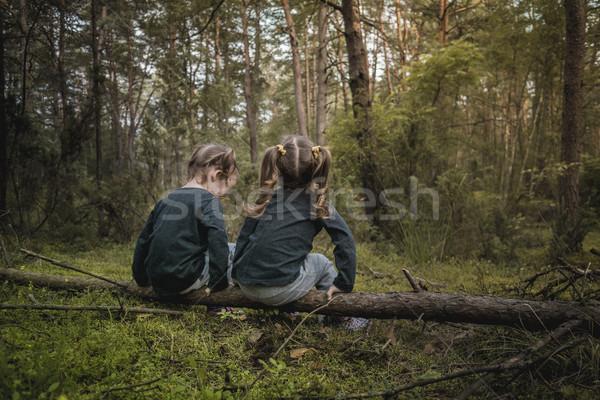 Iki kızlar tek başına orman oturma Stok fotoğraf © superelaks