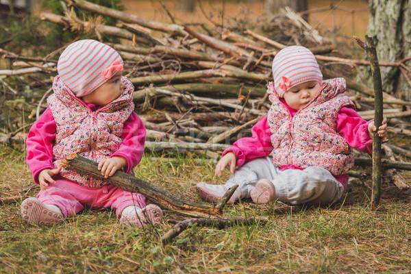 Küçük oturma orman iki çim Stok fotoğraf © superelaks