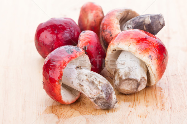Fresh Rosy Russula fungi on wooden plate Stock photo © supersaiyan3