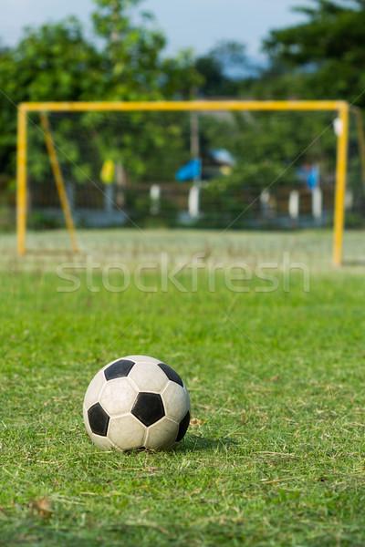 Voetbal voetbal doel groene veld gras Stockfoto © supersaiyan3