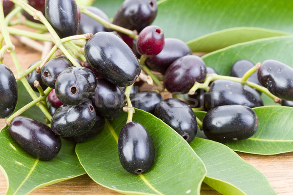Jambolan plum or Java plum 'Syzygium cumini (L) Skeels.' Stock photo © supersaiyan3