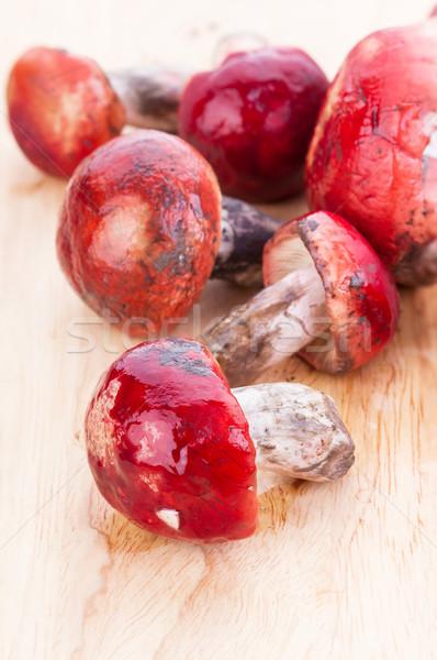 свежие розовый грибы пластина красный Сток-фото © supersaiyan3