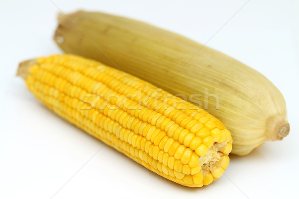 two boiled corn cob with yellow leaves Stock photo © supersaiyan3