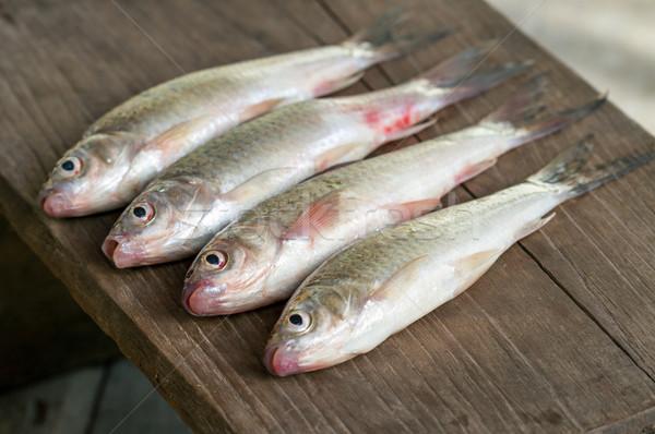 Balık çamur sazan ahşap plaka Stok fotoğraf © supersaiyan3