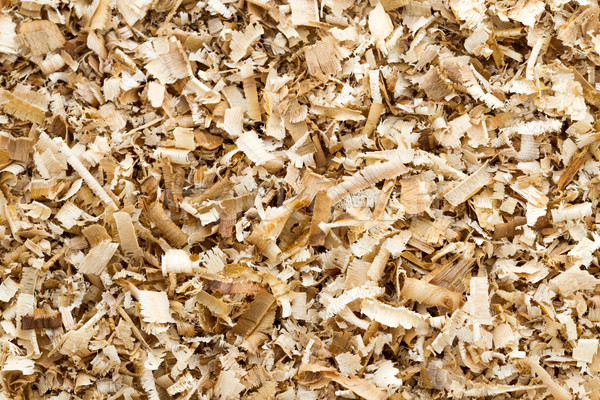 Wood shavings Stock photo © supersaiyan3